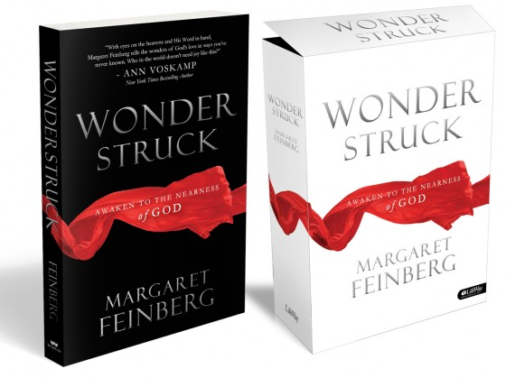 Wonderstruck Cover Art Image